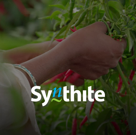 Website for Synthite