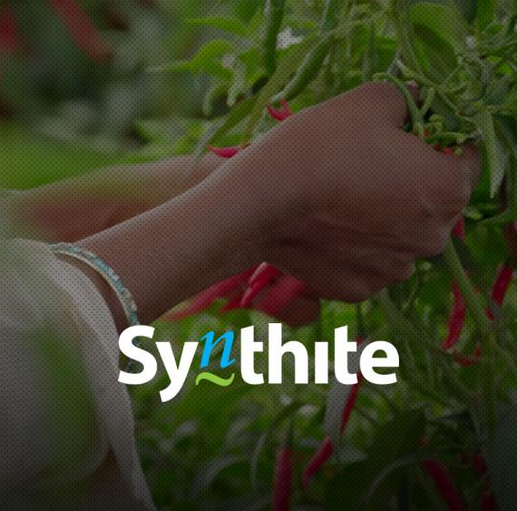 Website for Synthite